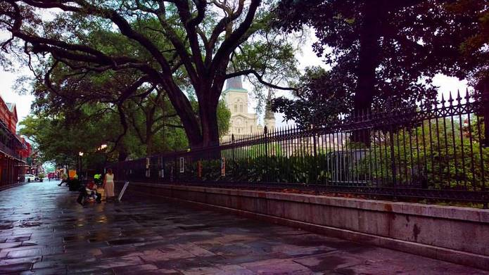 See Something Special in New Orleans, Louisiana, United States