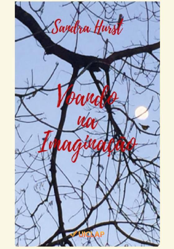Voando na Imaginação