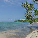 Diario de Costa Rica, el país de la naturaleza