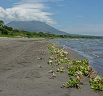 Diario de Nicaragua, en la ruta por Centroamérica