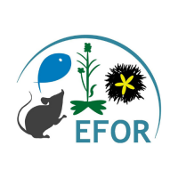 10th EFOR meeting
