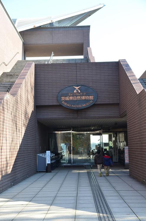 Ibaraki Nature Museum (茨城県自然博物館) - メイン写真: