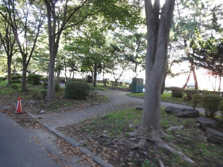 山王官公庁緑地 - メイン写真: