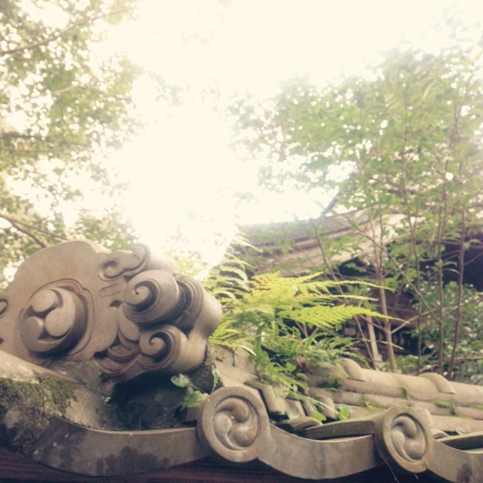 宇和津彦神社 - メイン写真: