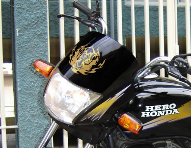 Eye of the Tiger Bike Decals