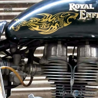 WallDesign Sticker For Motorcycle Power Of Shark Gold Reflective Vinyl