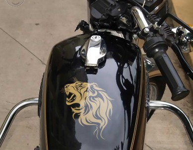 Lions Den Avenger Bike Stickers