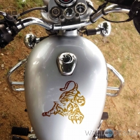 WallDesign Motorbike Graphics Playful Tiger Copper Stickers Reflective Vinyl