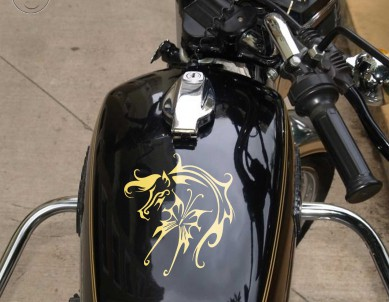 Fly Like a Horse Motorbike Graphic