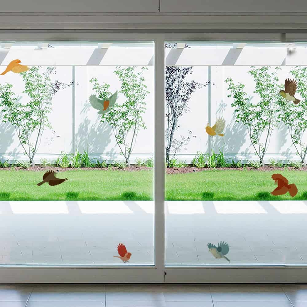 Colourful Frost Birds Glass room decal