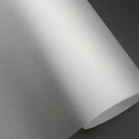Elegant Frost Film Roll room sticker