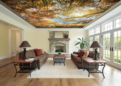 Jazz Up Your Boring White Ceilings With A Vast Range Of Wall Ceiling Stickers