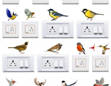 Colorful Natural Birds Switchboard Sticker