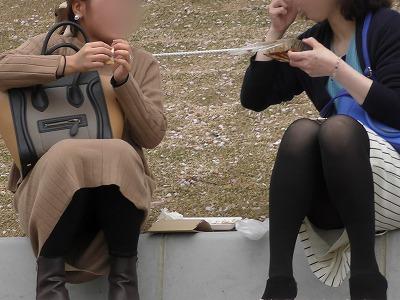 【お花見シリーズ027】【4K】黒タイツ・黒パンストのお姉さまたち