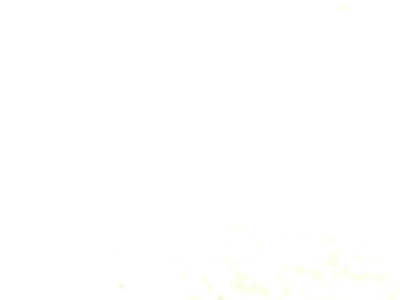 12798_09.jpg