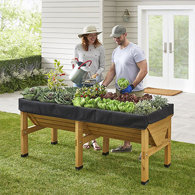 Why You Should Consider Raised Garden Beds