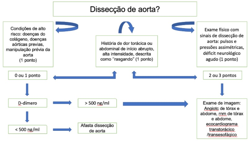 Esquema sobre dissecção de aorta
