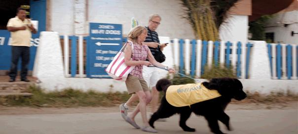 TVC: T-Mobile's Wi-Fi Dogs