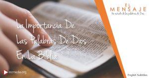 La Importancia De Las Palabras De Dios En La Biblia