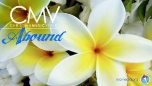 "Plumeria flowers with text overlay: ""Abound"""