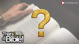 A person holding an open Bible with a gold question mark
