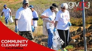 Volunteers picking up trash on the coast with overlay text Community Cleanup Day
