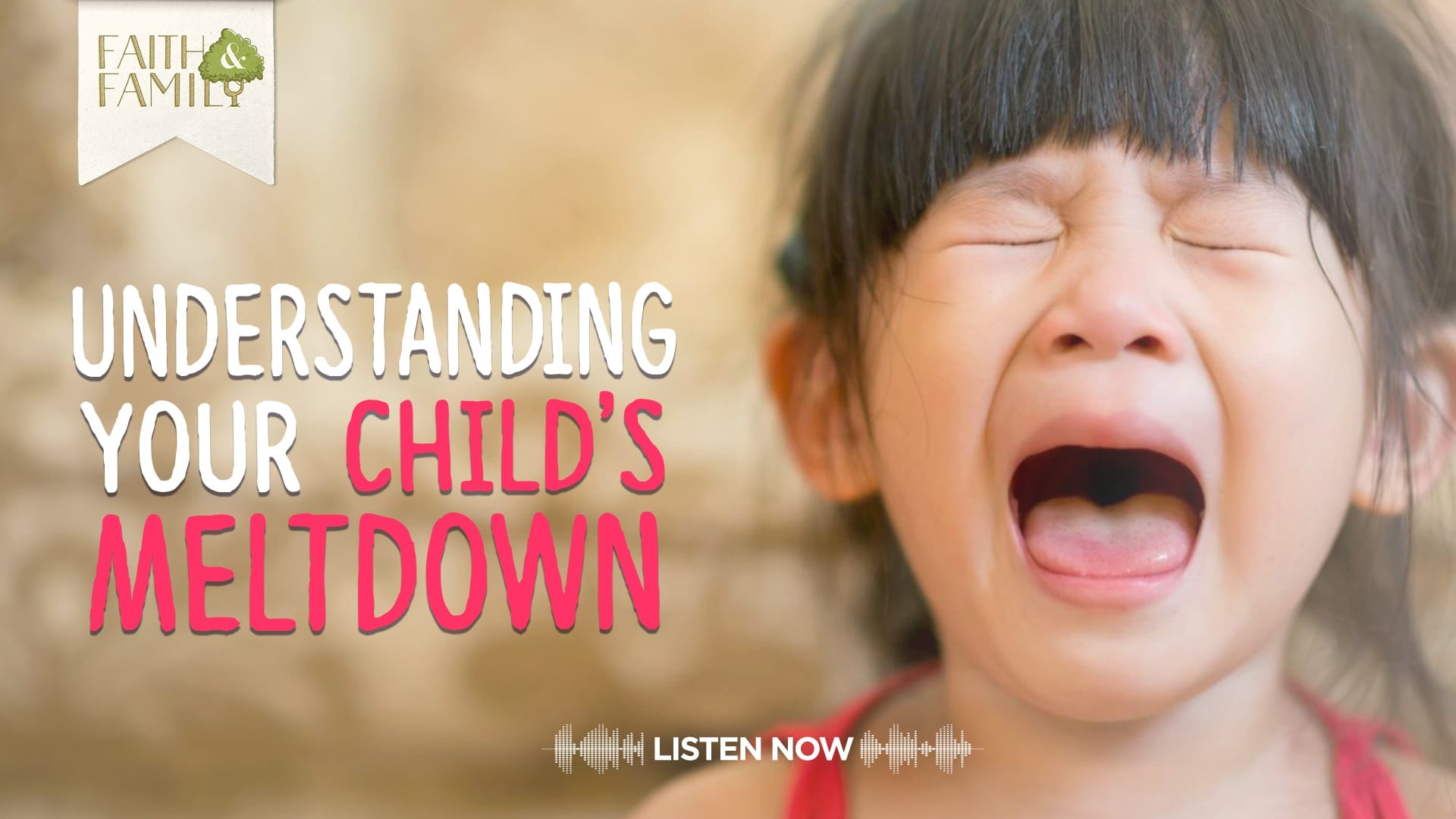 Understanding Your Child's Meltdown