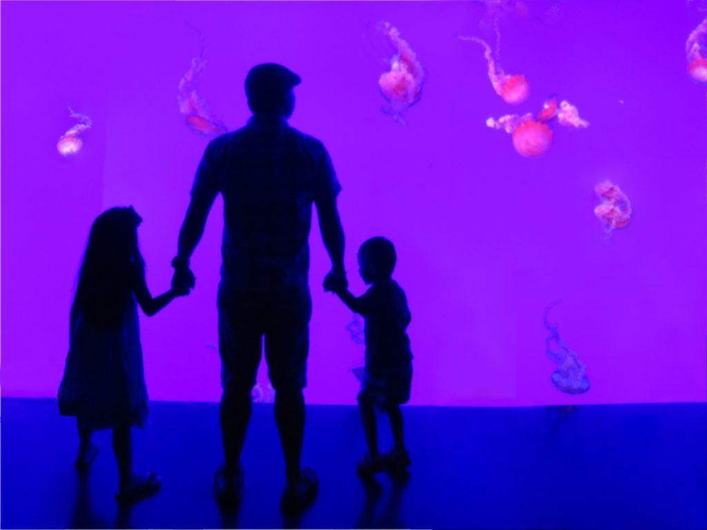 Silhouette of dad and children at the aquarium.
