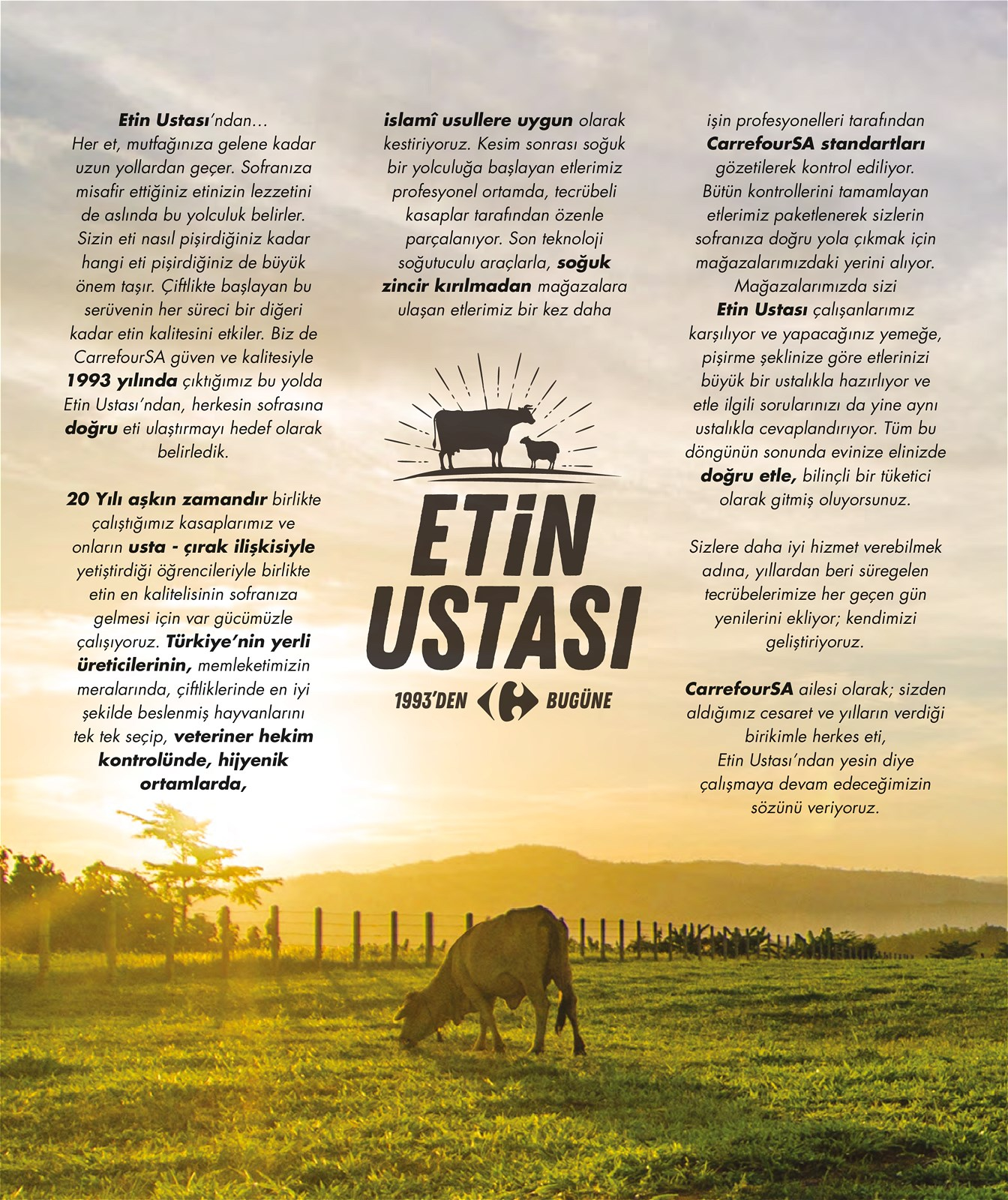 13.01.2021 CarrefourSA broşürü 2. sayfa