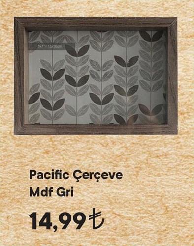 Pacific Çerçeve Mdf Gri image
