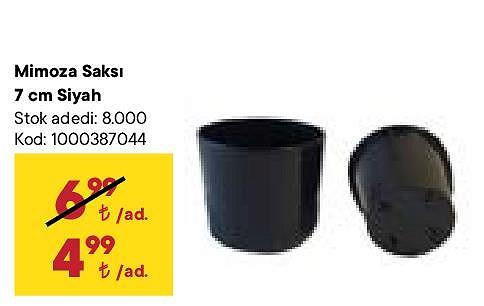 Mimoza Saksı 7 cm Siyah image