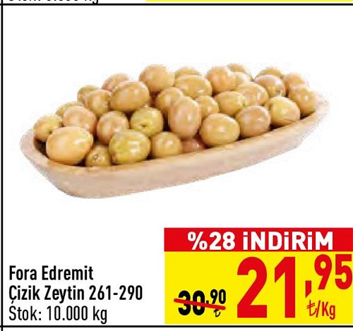 Fora Edremit Çizik Zeytin 261-290 kg image