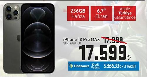 iPhone 12 Pro Max 256 GB image