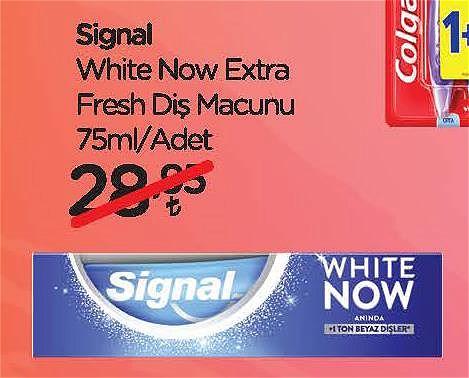 Signal White Now Extra Fresh Diş Macunu 75 ml image