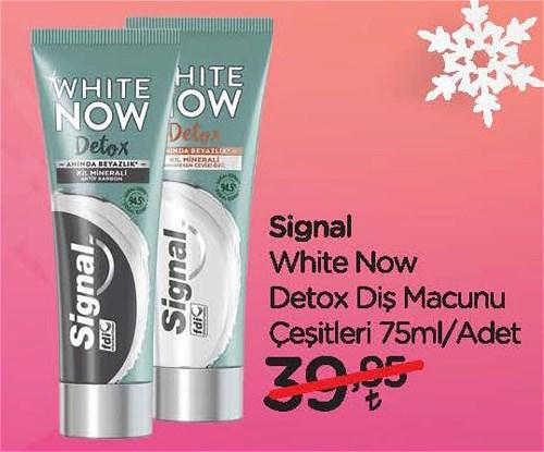 Signal White Now Detox Diş Macunu Çeşitleri 75 ml image
