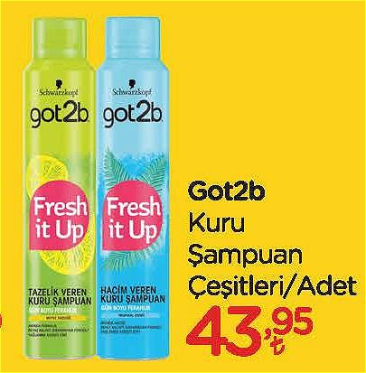 Got2b Kuru Şampuan Çeşitleri/Adet image