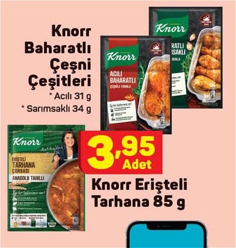 Knorr Baharatlı Çeşni Çeşitleri / Knorr Erişteli Tarhana 85 g image