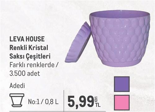 Leva House Renkli Kristal Saksı Çeşitleri No:1/0,8 L image