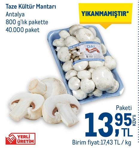 Taze Kültür Mantarı Antalya 800 g'lık Pakette Paketi image