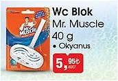 Mr. Muscle 40 g Okyanus Wc Blok image