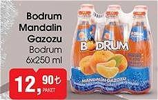 Bodrum 6x250 ml Bodrum Mandalin Gazozu image