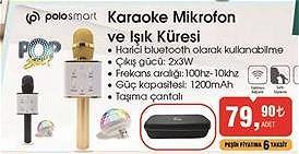 Polosmart Karaoke Mikrofon ve Işık Küresi image