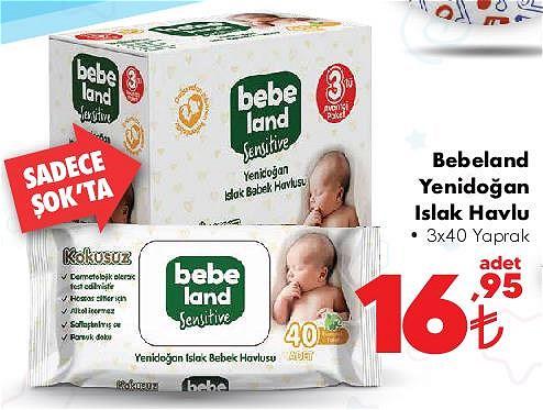 Bebeland Yenidoğan Islak Havlu 3x40 Yaprak image