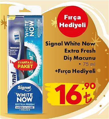 Signal White Now Extra Fresh Diş Macunu 75 ml+Fırça Hediyeli image