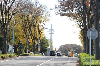 航空記念公園の紅葉#386635