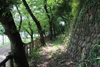 滝の城址公園#387848