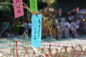 所沢神明社の七夕祭