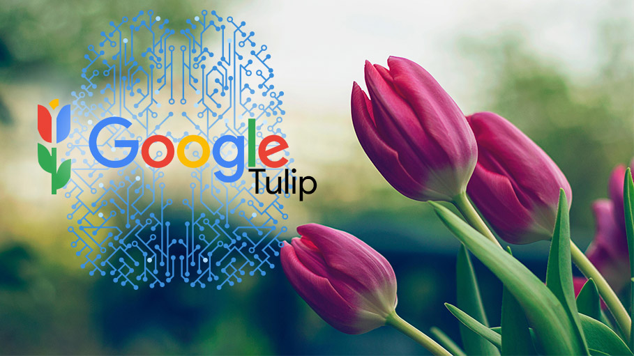 Google Tulip - Communicate with Plants