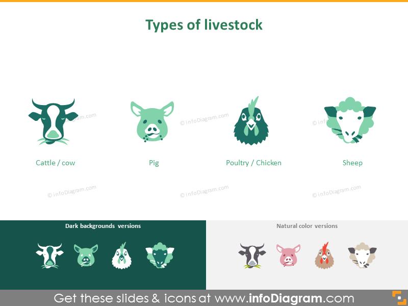Animal husbandry and fishery: types of livestock