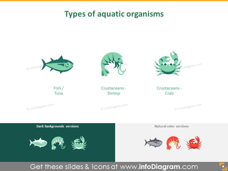 Types of aquatic organism